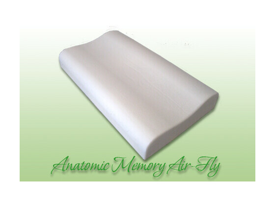 Anatomic Memory Air-Fly